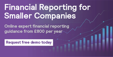 Financial Reporting for Smaller Companies Banner 397x200